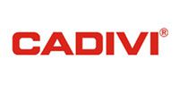 day-va-cap-dien-cadivi_our-brand